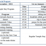 New Year's Eve Special Program